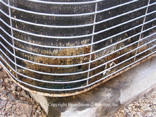 damaged ac fins by dog urine